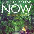 Poster du film The Spectacular Now réalisé par James Ponsoldt en 2013 avec Miles Teller et Shailene Woodley