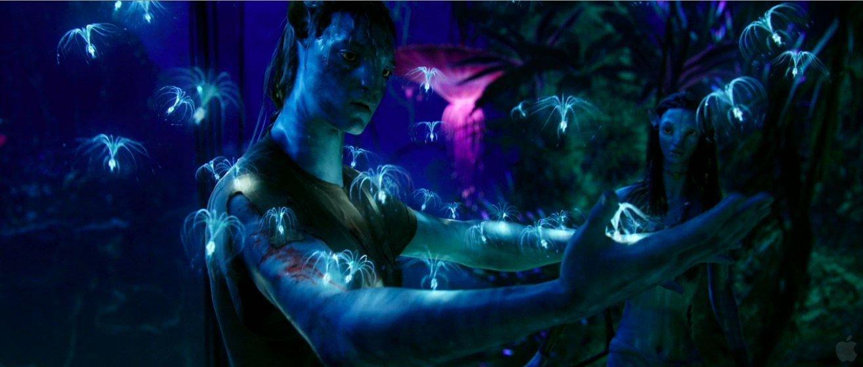 Photo du film Avatar avec Jake découvrant le monde de Pandora