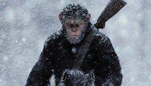 Poster teaser La Planète des Singes: Suprématie avec César