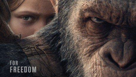 Poster du film La Planète des Singes: Suprématie avec César et la jeune fille