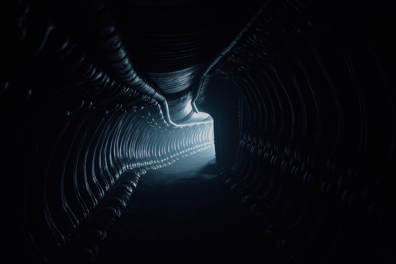Photo de l'intérieur d'un vaisseau d'Ingénieurs dans Alien: Covenant