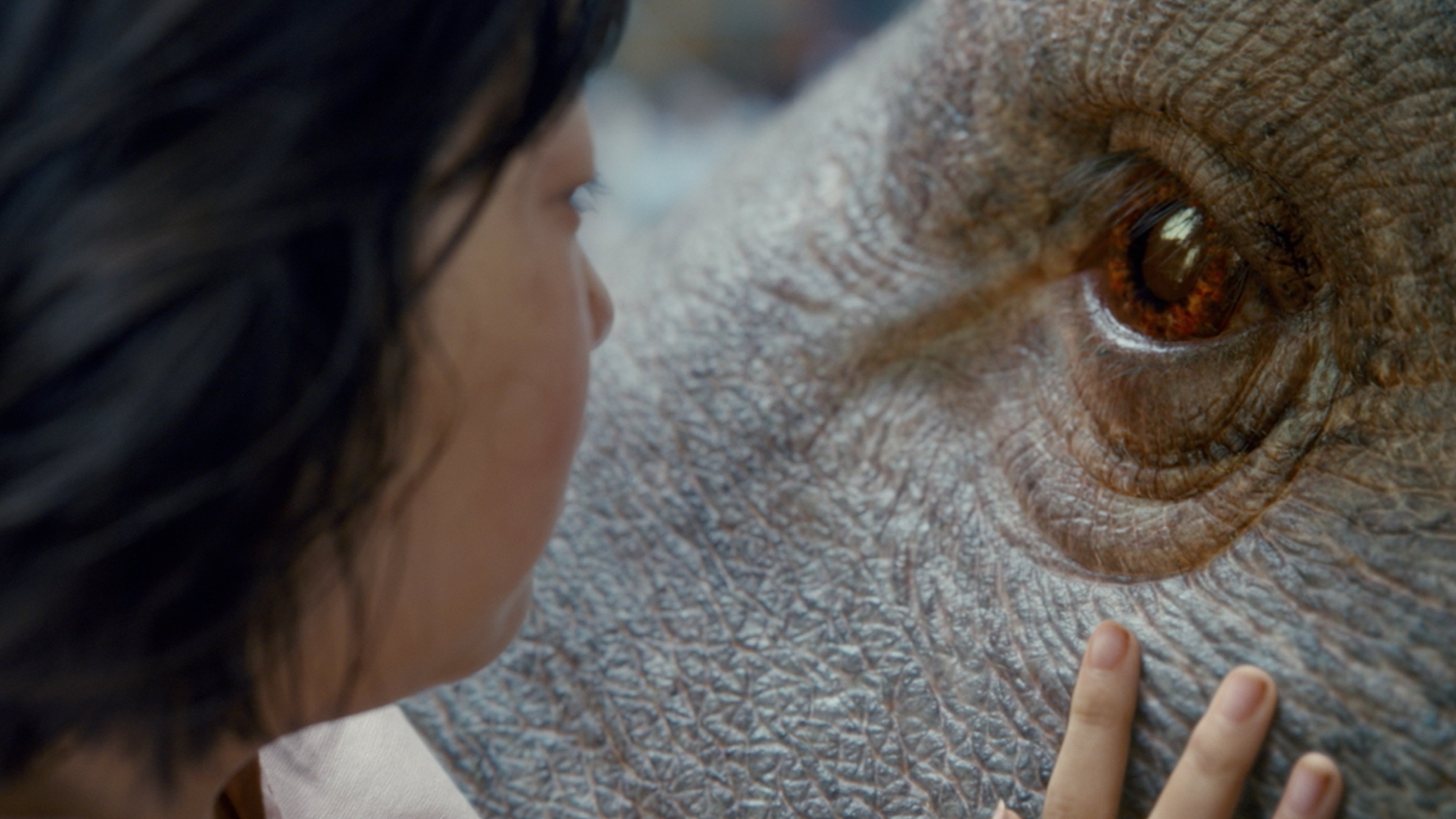Photo du film Okja avec An Seo Hyun