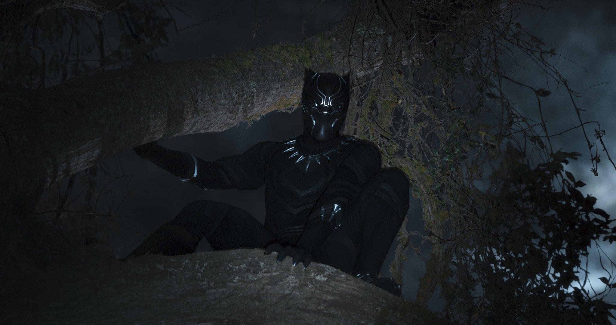 Photo du film Black Panther réalisé par Ryan Coogler avec Black Panther dans les arbres et éclairé à la lampe torche