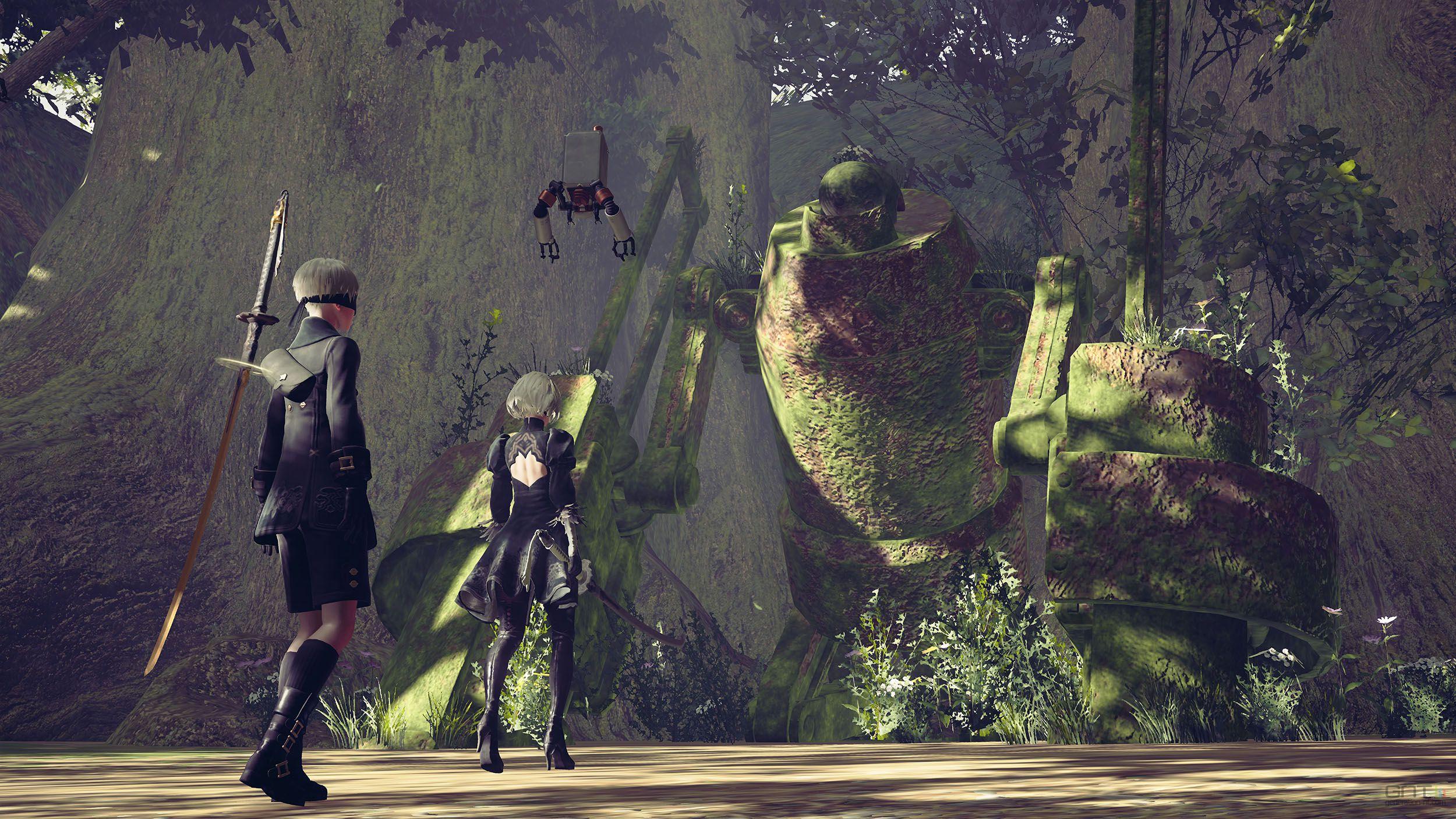 Image d'une forêt dans le jeu vidéo NieR:Automata