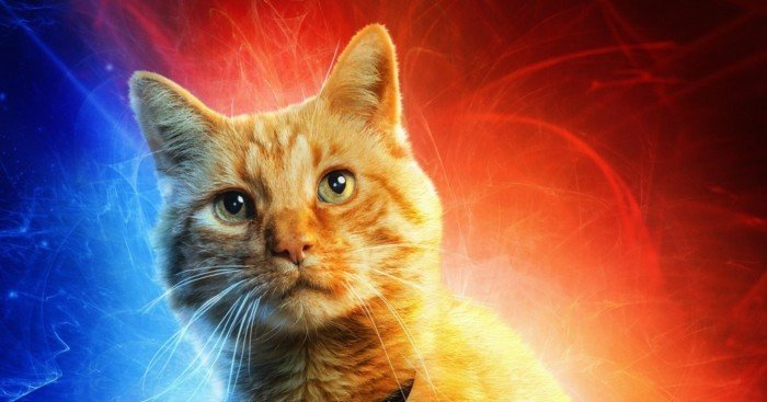 Poster du film Captain Marvel avec le chat Goose