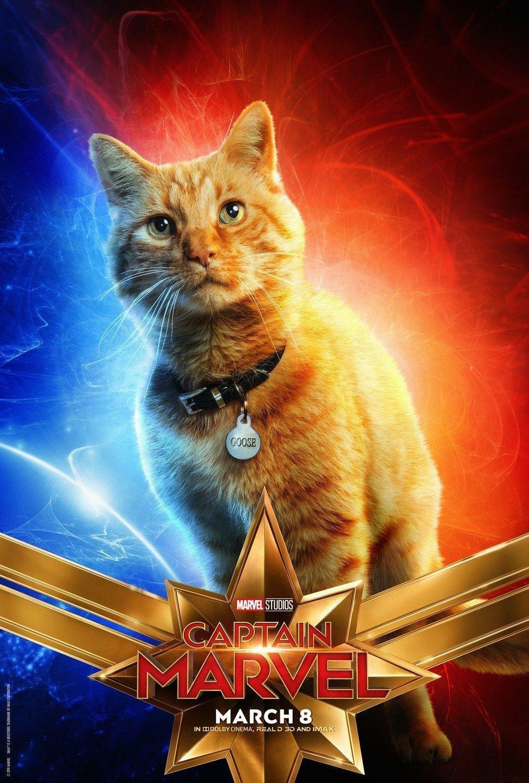 Poster du film Captain Marvel avec le chat Goose