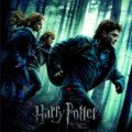 Harry Potter et les reliques de la mort part 1 (8)